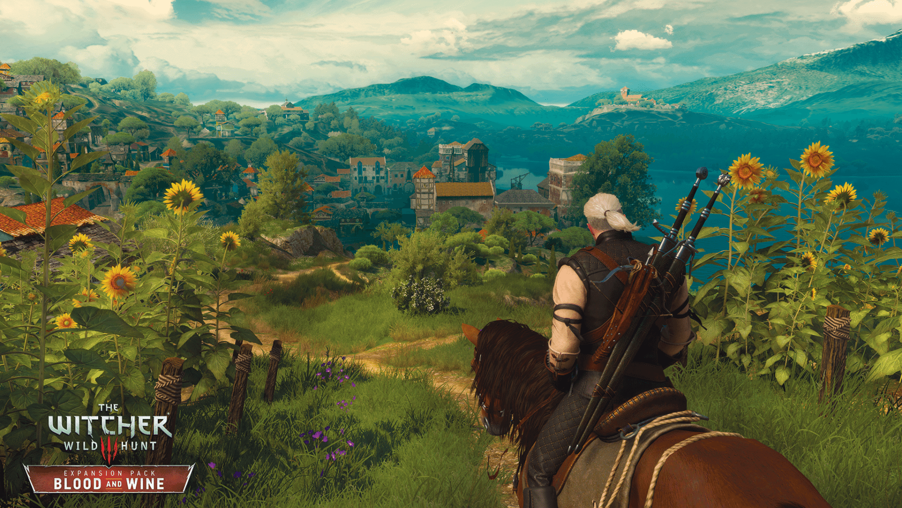 The Witcher 3 Pic 5.png