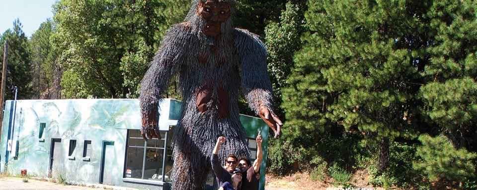 the-bigfoot-diaries-pic-1