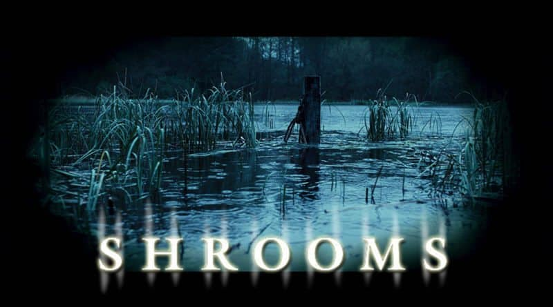 Shrooms 8