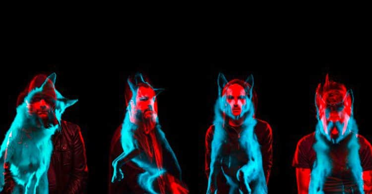 Wolves 1