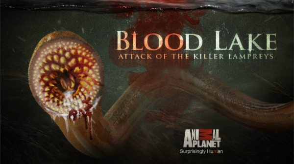 Horror Movie Review Blood Lake Attack Of The Killer Lampreys