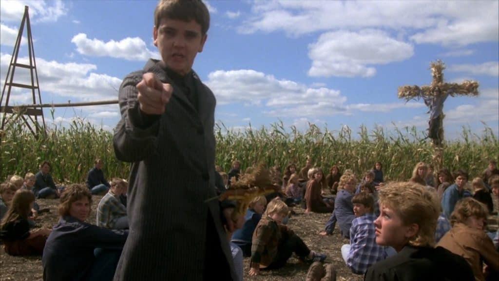 Corn 21
