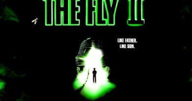 Fly II 1