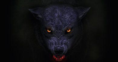 Orange Goblin 2