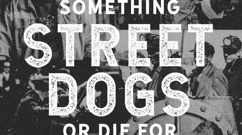 Street Dogs 1