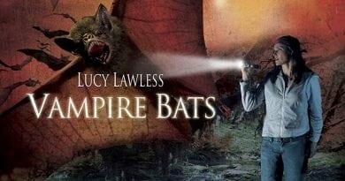 Vampire Bats 1